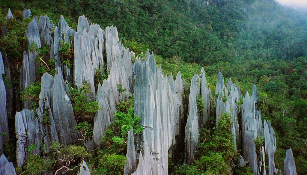 グヌン•ムル国立公園内の尖った岩岩の風景