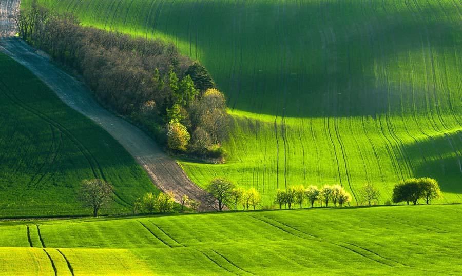 モラビアの大草原の斜面と車道
