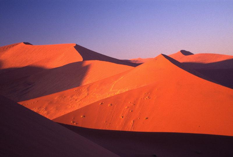 夕暮れ時のナミブ砂漠