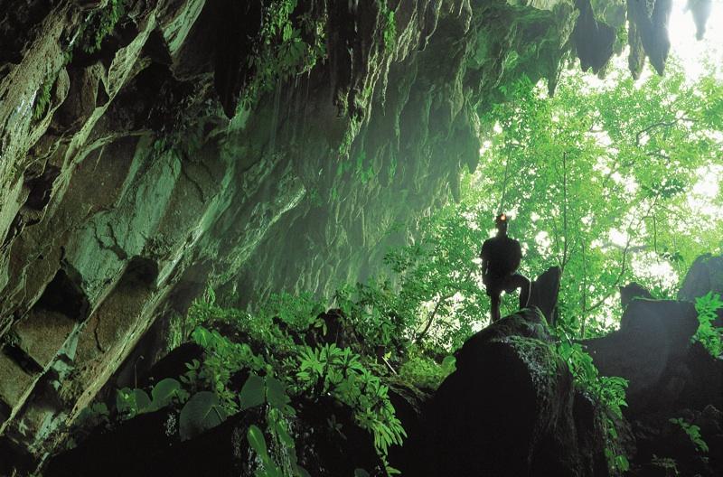 グヌン•ムル国立公園の洞窟入り口付近の風景
