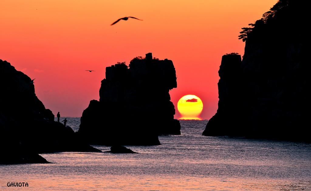 夕日に染まる巨済島の獅子岩と海金剛と鳥