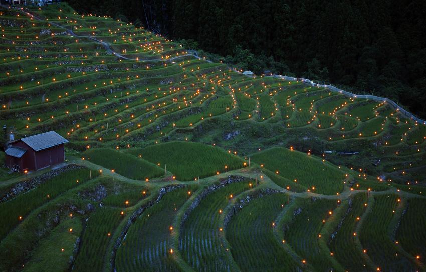 丸山千枚田伝統の虫送りの風景