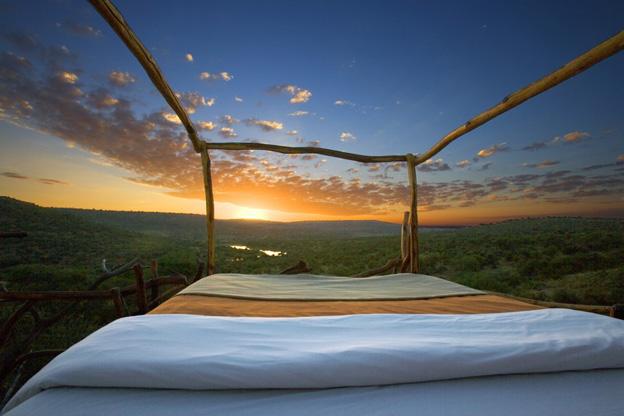 ロイサバホテルのスターベッドとサバンナの風景