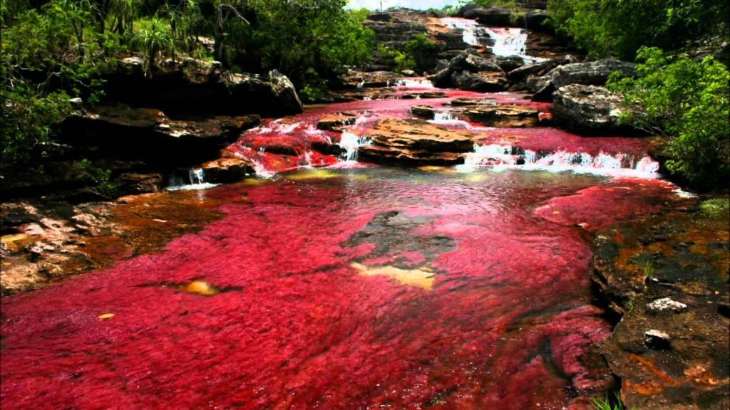 赤色に染まるカーニョ・クリスタレス