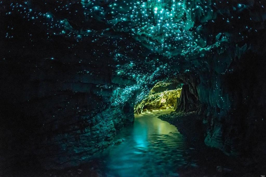 死ぬまでに一度は行きたい世界の絶景:ニュージーランドのワイトモ洞窟