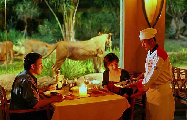 マラリバーサファリロッジのライオンを眺めながら食事ができるレストランの写真