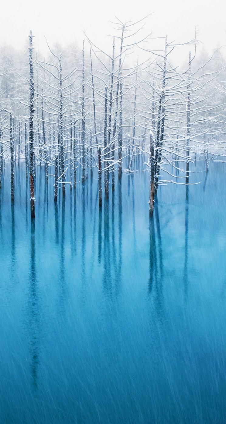 寒いけど自分の目で見たい!北海道の冬の絶景5選
