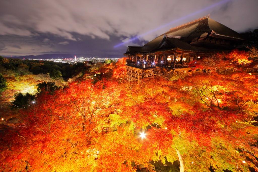 風情ある京都の夜を楽しむ清水寺の「紅葉ライトアップ」