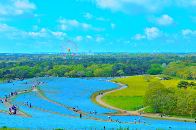 見どころ満載「関東地方」の観光スポットおすすめランキング 人気20選