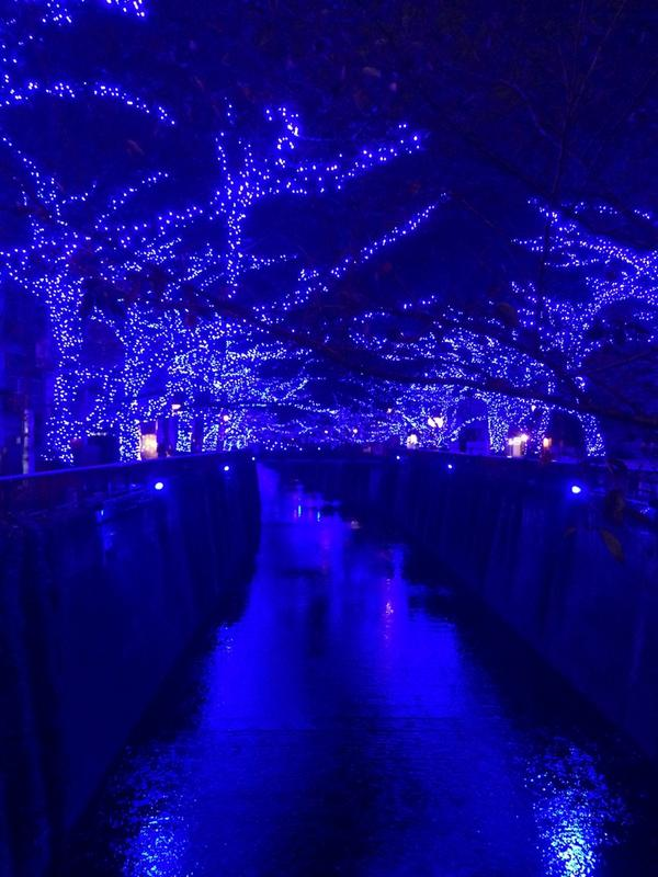 Nakameguro 青の洞窟 2014