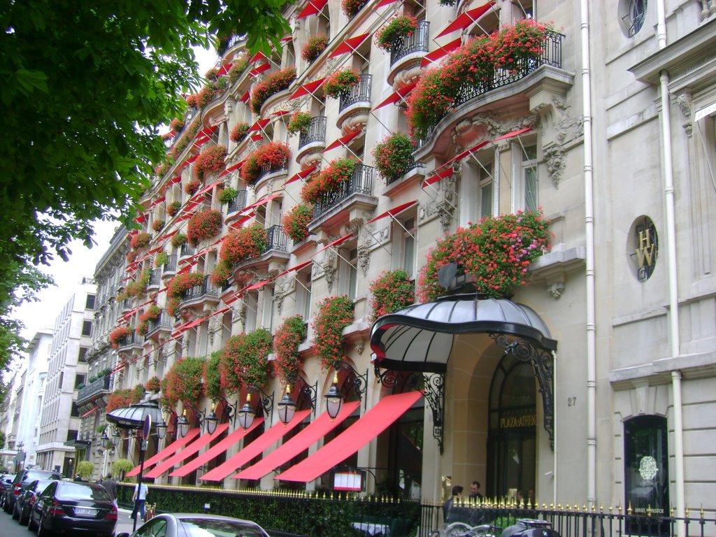 革新を続けるパリのパラスホテル「ホテル・プラザ・アテネ」で優雅な滞在を