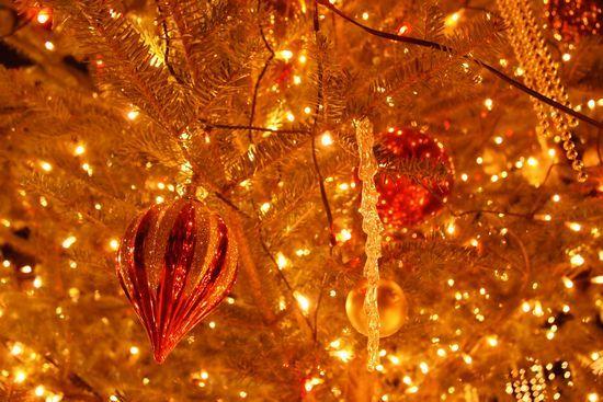 軽井沢高原教会のクリスマスキャンドルナイトのツリー