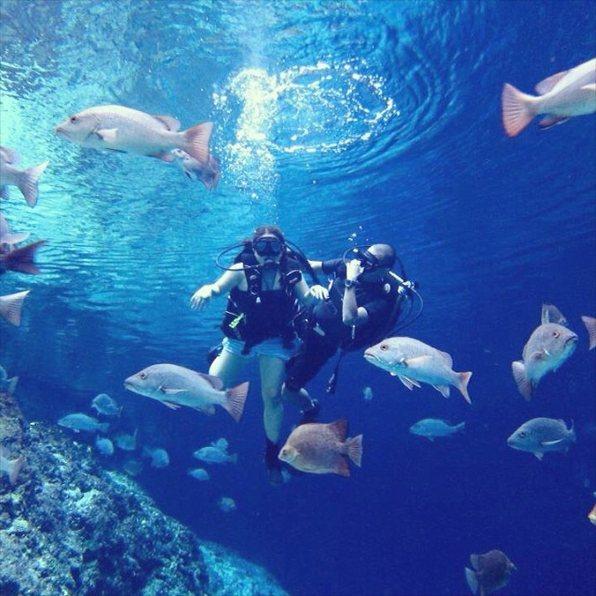 ヒナトゥアン川の魚達