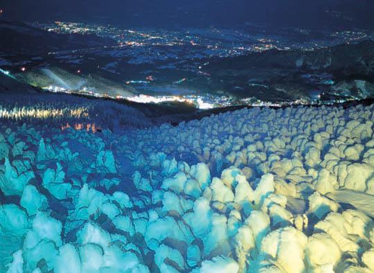 蔵王の樹氷のライトアップ