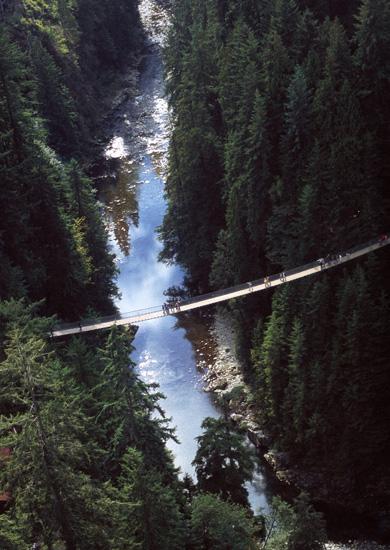上空から見たキャピラノの吊り橋