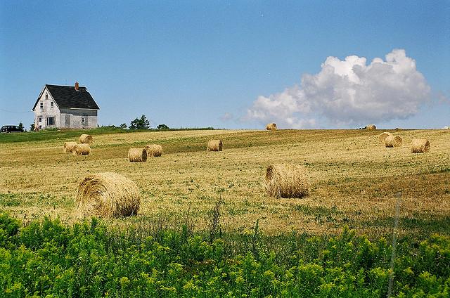 『赤毛のアン』の故郷で有名な世界一美しい島とも言われる「カナダのプリンスエドワード島」