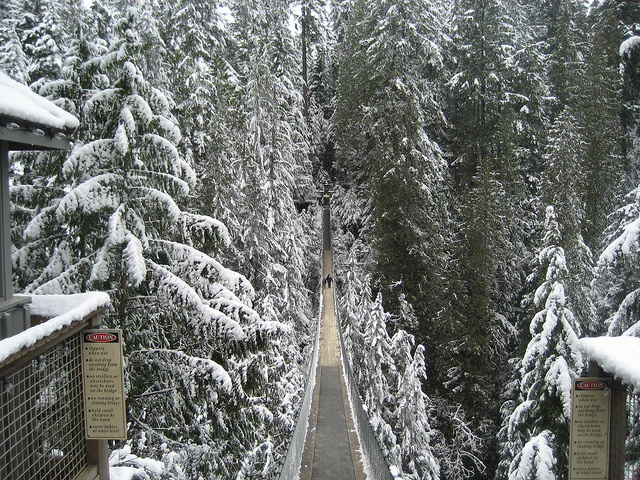 冬のキャピラノの吊り橋