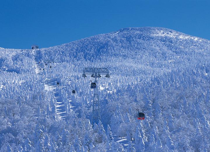 蔵王の樹氷のロープウェイ