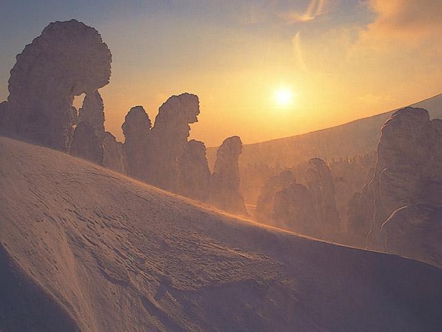 夕暮れ時の蔵王の樹氷