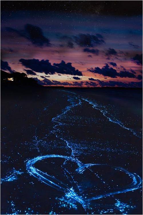 ハートマークを描くバードゥ島の海辺
