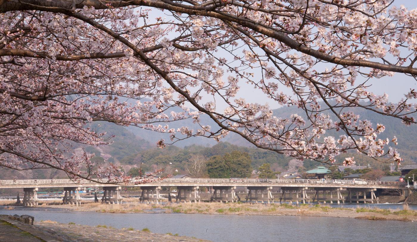 風光明媚な嵐山の絶景を望む「翠嵐 ラグジュアリーコレクションホテル 京都」