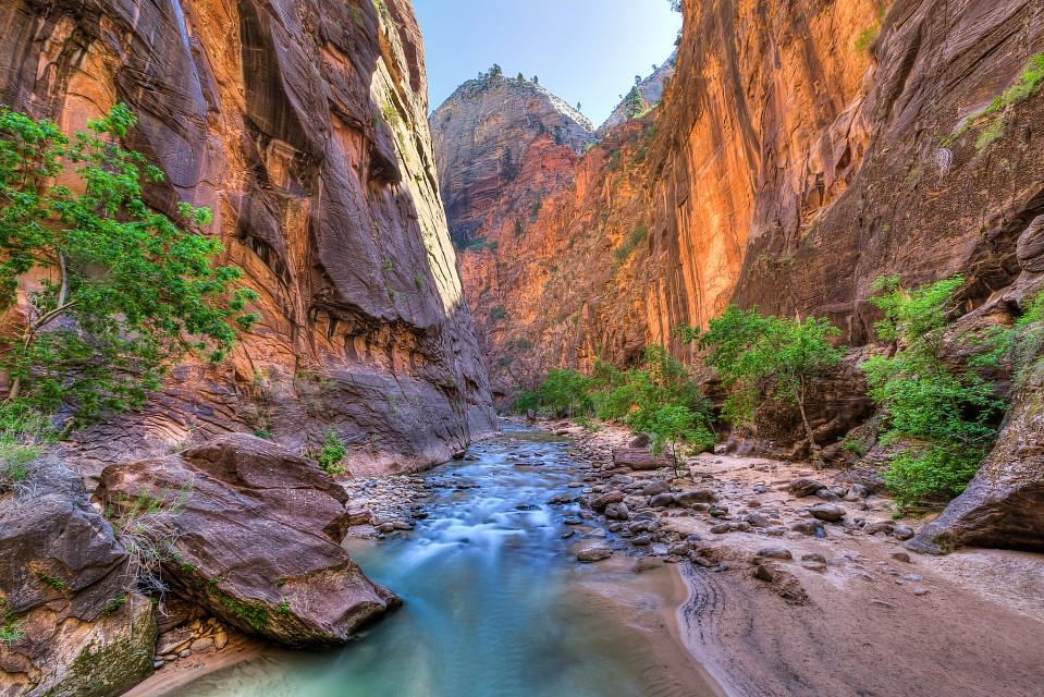 ザイオン国立公園 Zion National Parkの川辺