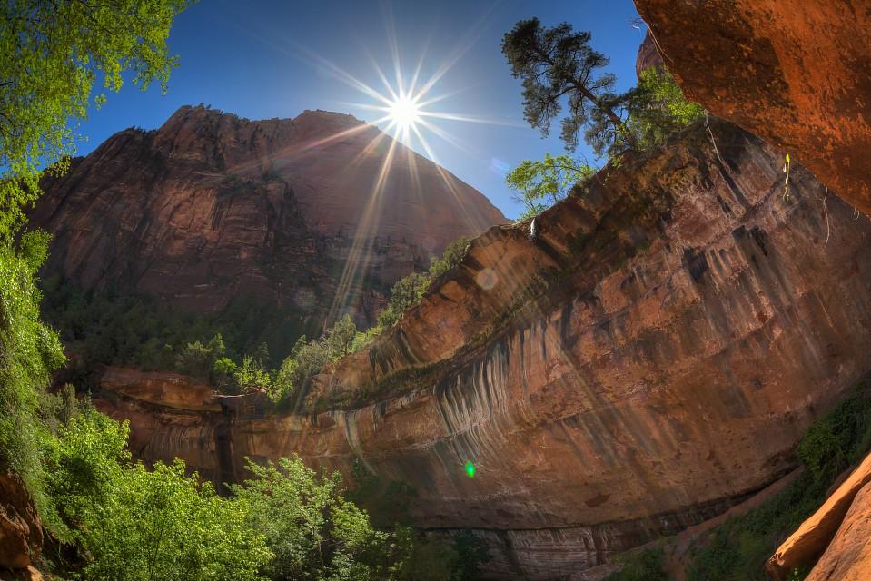 ザイオン国立公園 Zion National Parkのエメラルドプールズトレイル