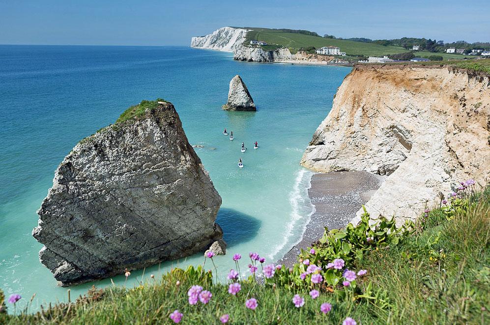 様々な野生生物や植物が咲き乱れる英国のリゾート地「ワイト島」
