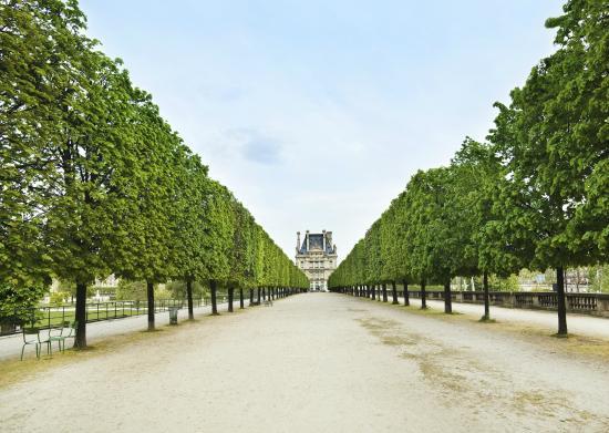 パリ/フランスの風景