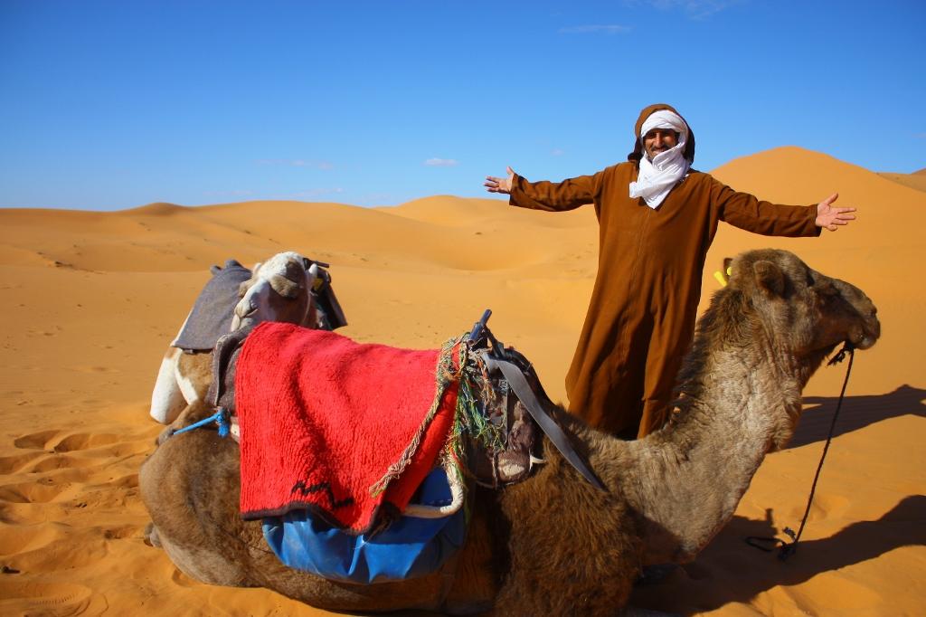 サハラ砂漠とラクダの画像です。