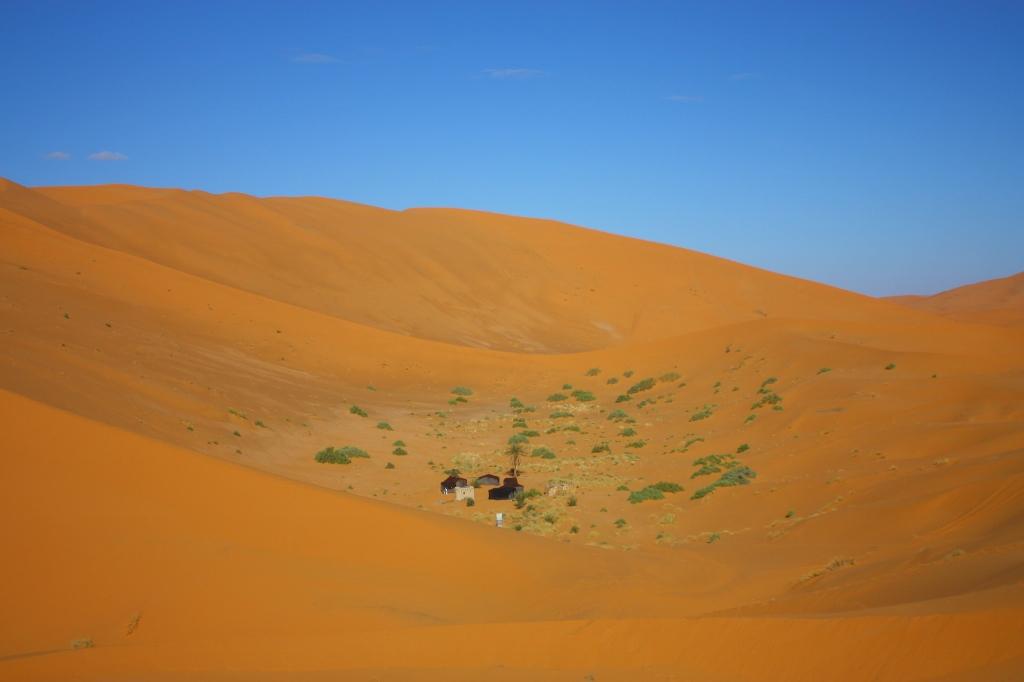サハラ砂漠の真ん中に立つテントの群れの画像です。