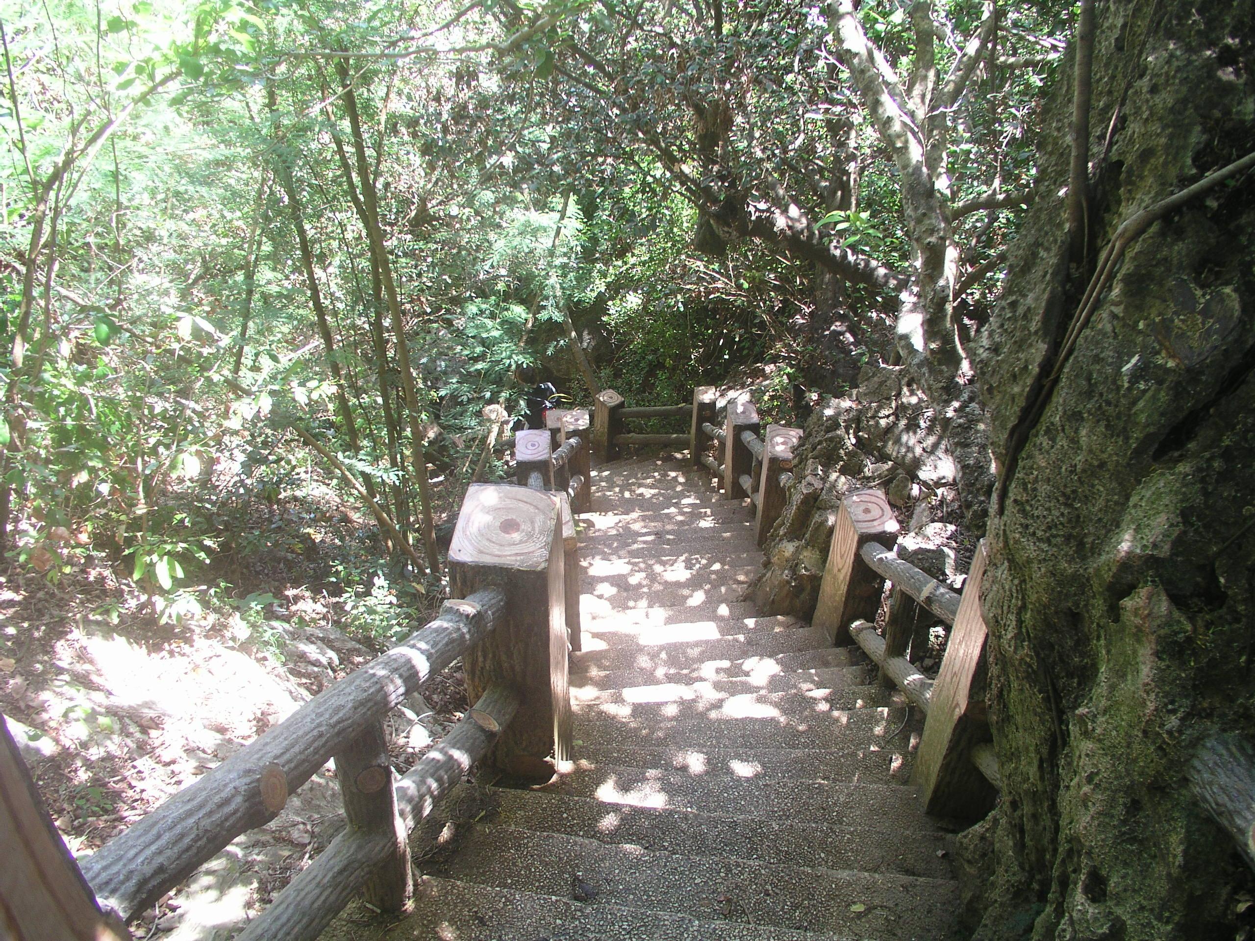 グロット 階段