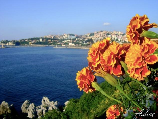 黒海沿いの岸壁に建つトルコの絶景5つ星ホテル「デデマン・ゾングルダク」