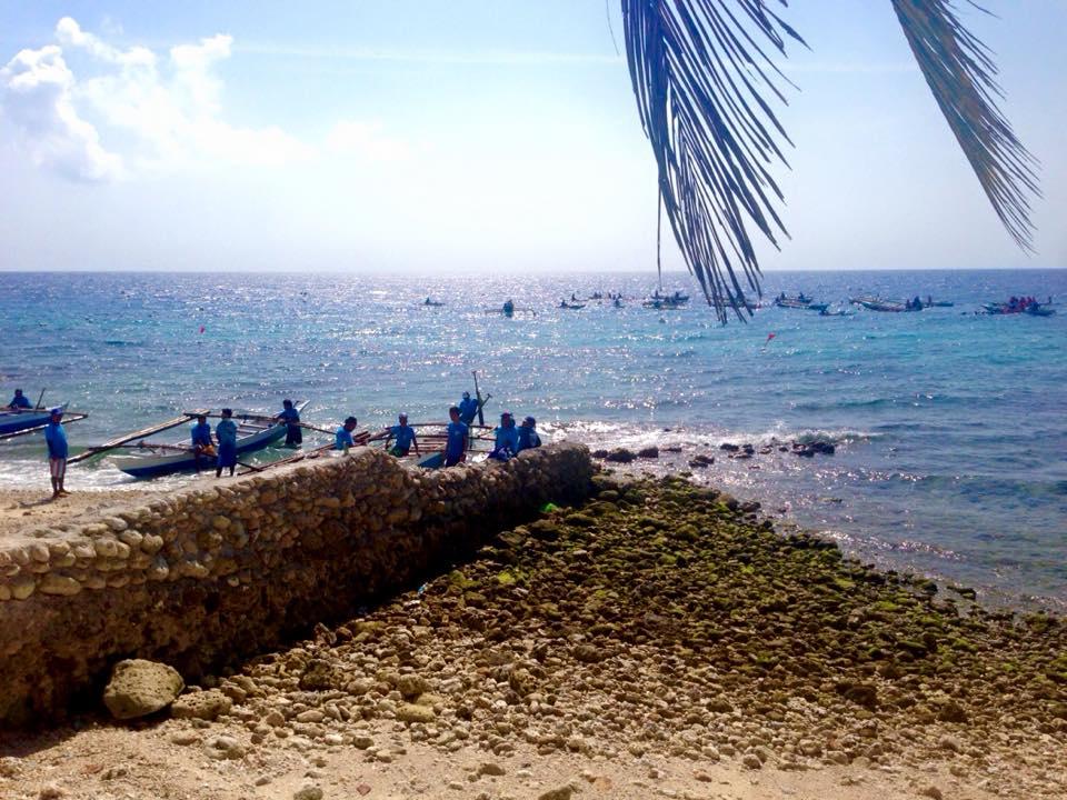 オスロブのジンベイザメと泳げるビーチ