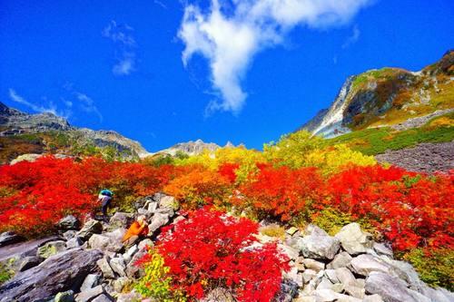 日本の魅力を見つけにいこう!手つかずの自然が多く残る大自然の宝庫「上高地」