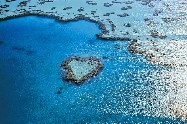 海も山も!ケアンズから行くオーストラリアの世界遺産めぐり