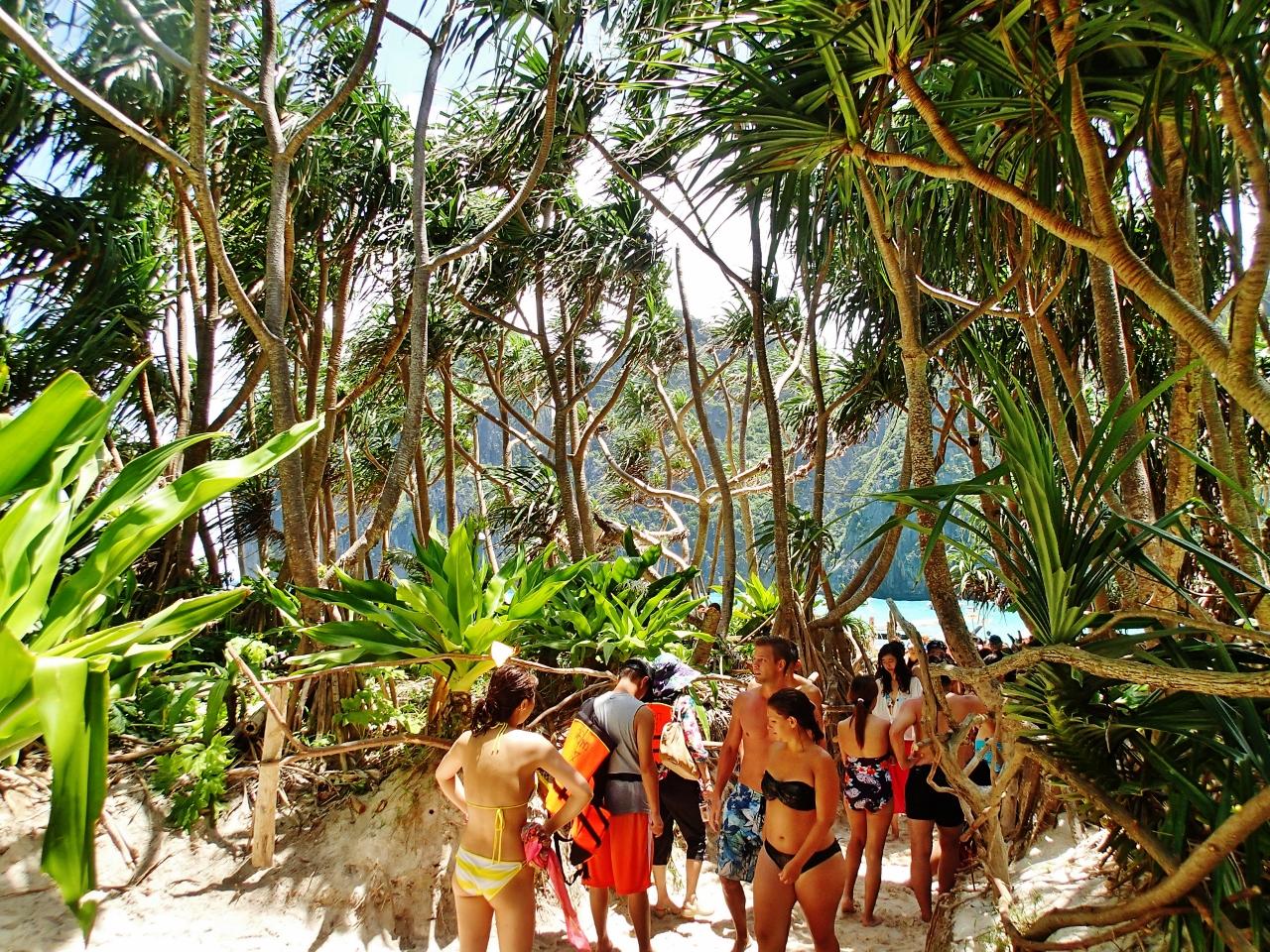 タイ ピピ・レイ島 マヤビーチへの道