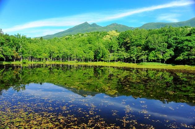 知床五湖風景