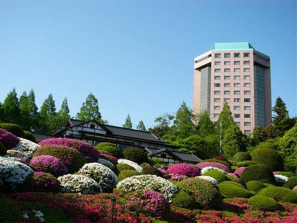 茂原エリアのホテル・宿人気おすすめランキング