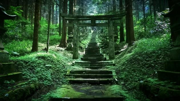 神秘的すぎる!まるで別世界への入り口のような「上色見熊野座神社」
