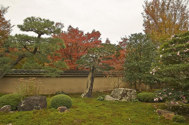 天得院の庭園