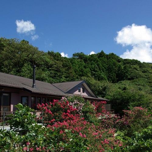 全室3室の大人の隠れ家「伊豆大島 ホテル&リゾート マシオ」