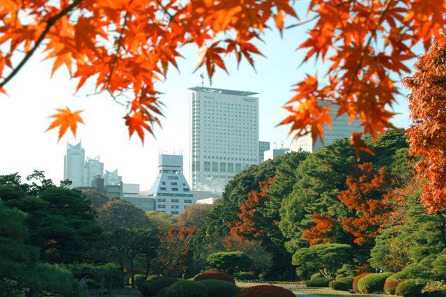 高層階からの眺望が自慢の「小田急ホテルセンチュリーサザンタワー」