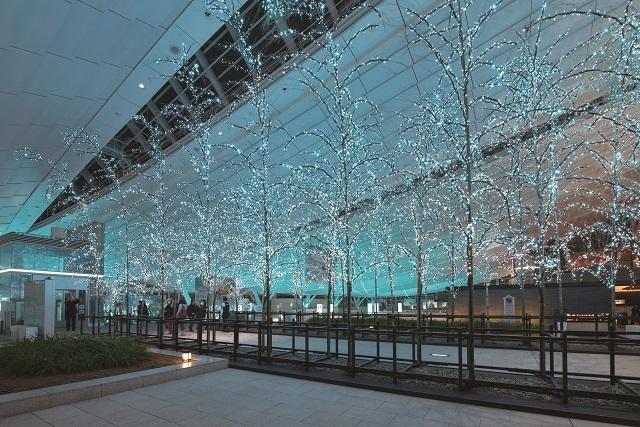 イルミネーションはクリスマスだけじゃない!東京のおすすめイルミネーションスポット5選