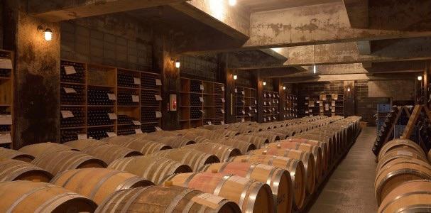 信濃ワインのワインセラー