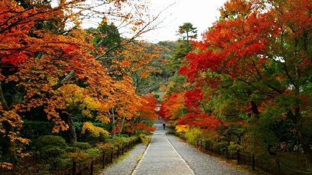 京都・二尊院