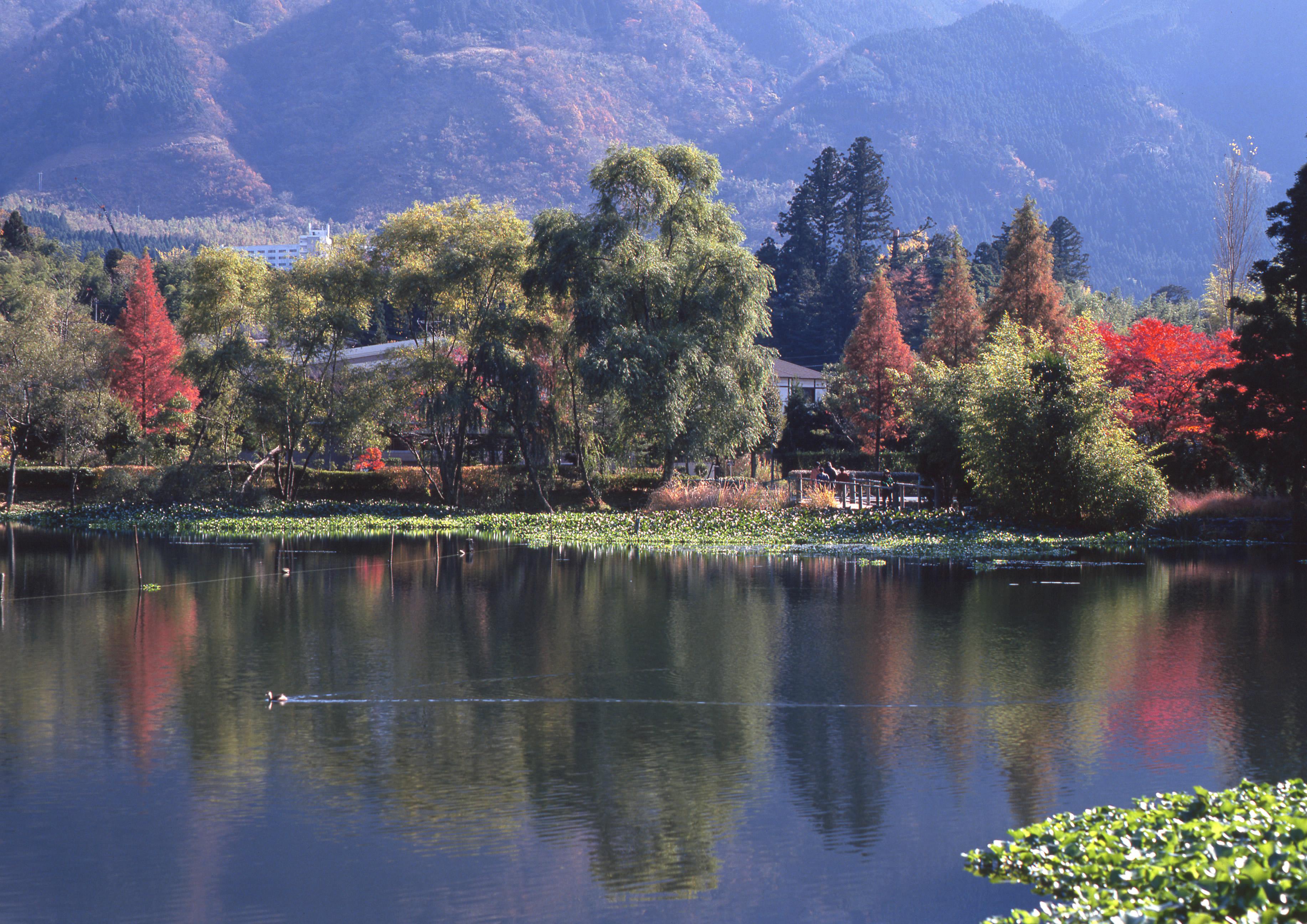 九州の軽井沢「湯布院」の観光スポットおすすめランキング