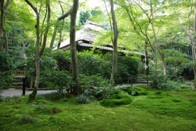 京都・紙王寺
