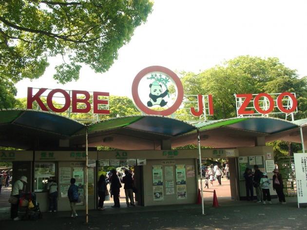 王子動物園のゲート