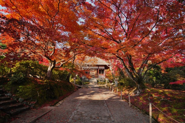 京都・常寂光寺